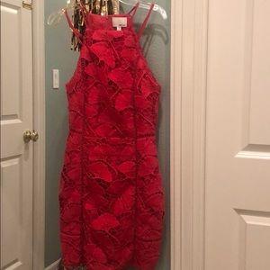 Greylin Yasmine Fuchsia Lace Dress in Azalea